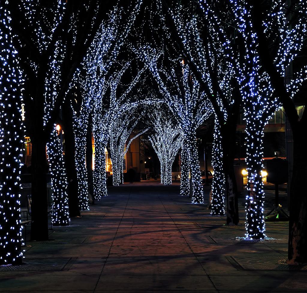 Beautiful christmas lights - Christmas Pretty Christmas Lights
